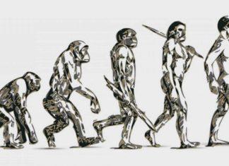 Czy człowiek rzeczywiście pochodzi od małpy?